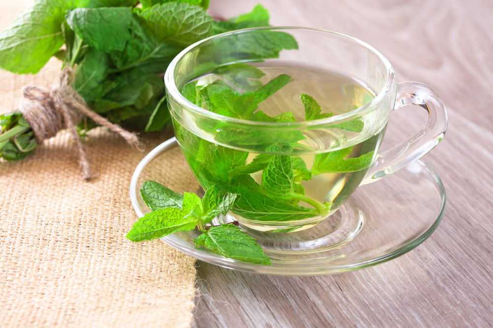 mint-and-mint-tea