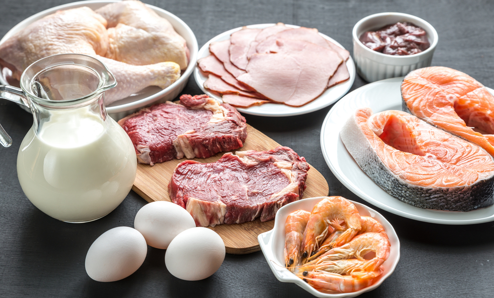 different-sources-of-protein
