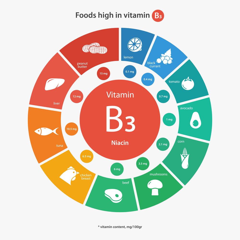 foods-that-are-high-in-vitamin-b3-niacin-infographic