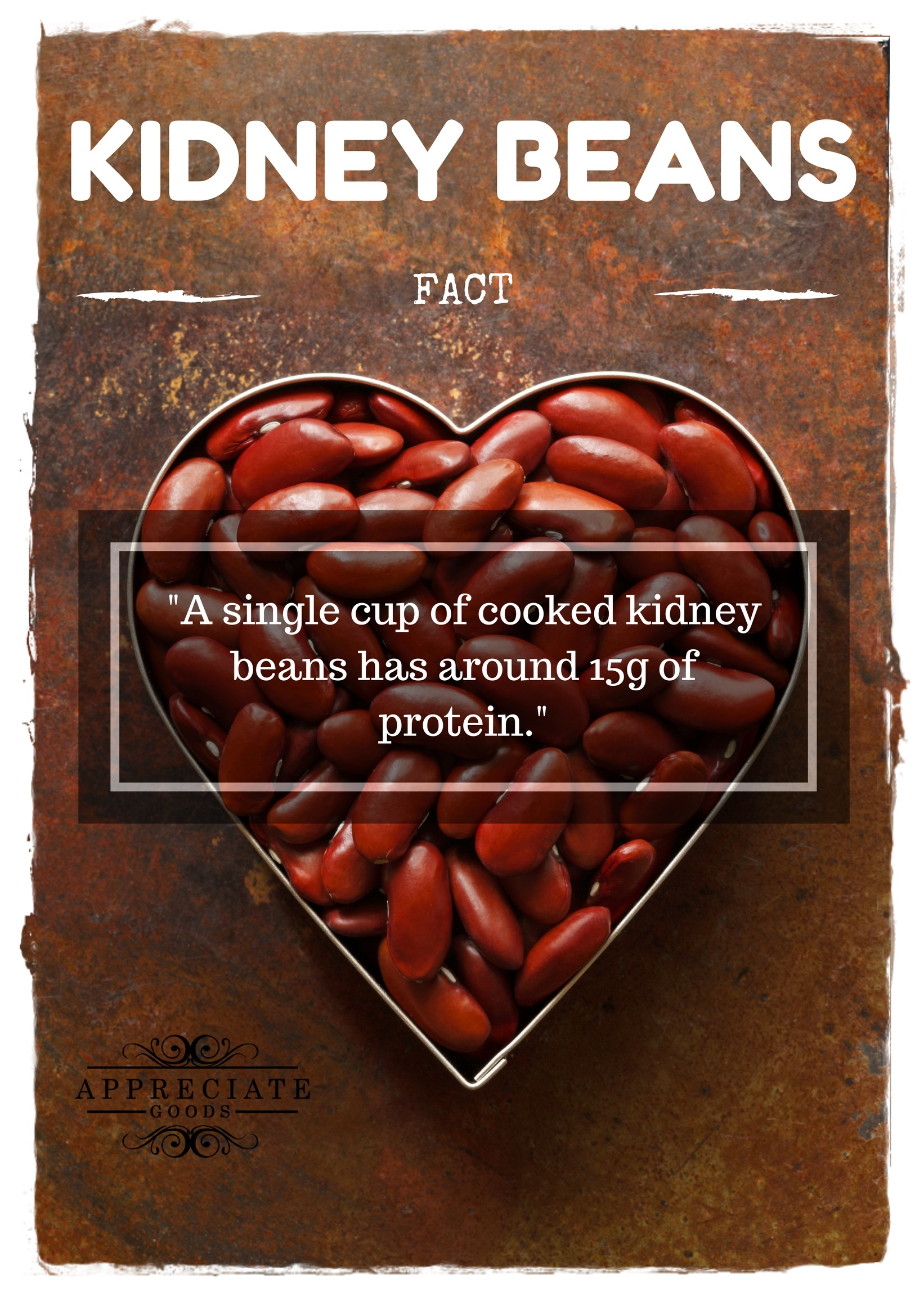 30 Wonderful And Amazing Health Benefits Of Kidney Beans