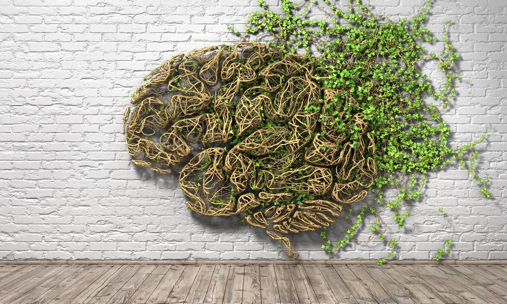 memory-brain-health