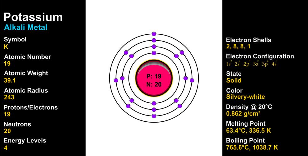 potassium-infographic