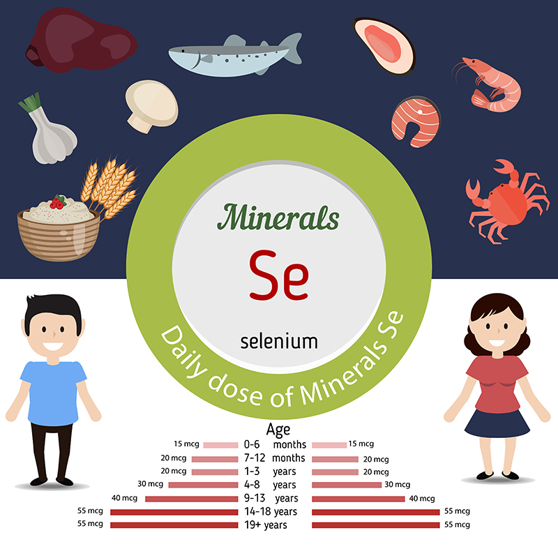 selenium-data-how-much-selenium-do-you-need-per-day
