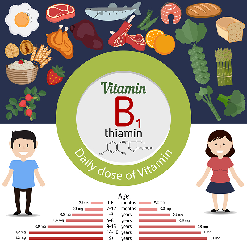 vitamin-b1-thiamine-infographic-daily-needs