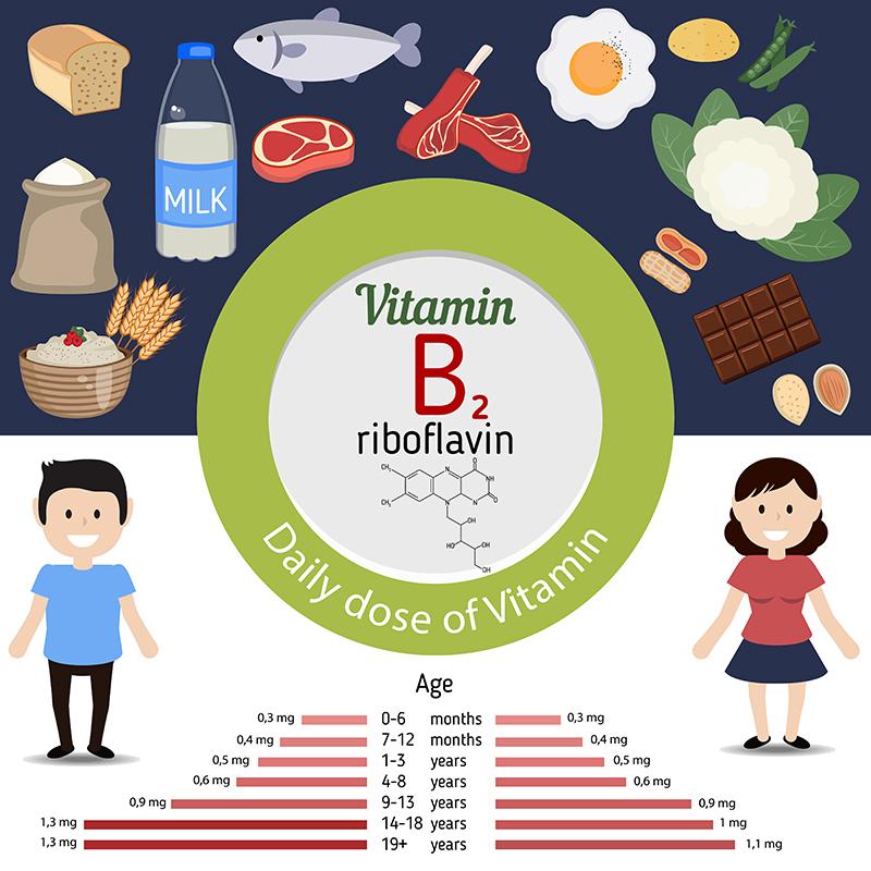 vitamin-b2-riboflavin-daily-dose-of-vitamin-intake-infographic