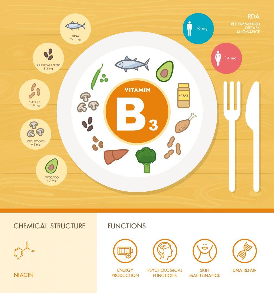 vitamin-b3-niacin-infographic