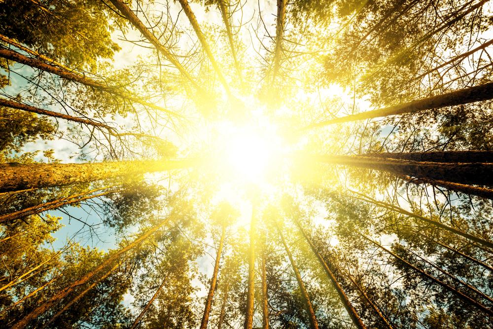 avoid-over-exposure-to-sunlight