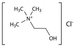 Choline Formula Structure