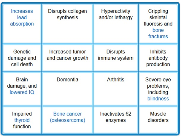 Summary of Fluoride's Potential Health Hazards