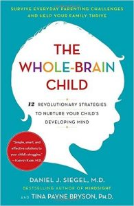 the-whole-brain-child-book