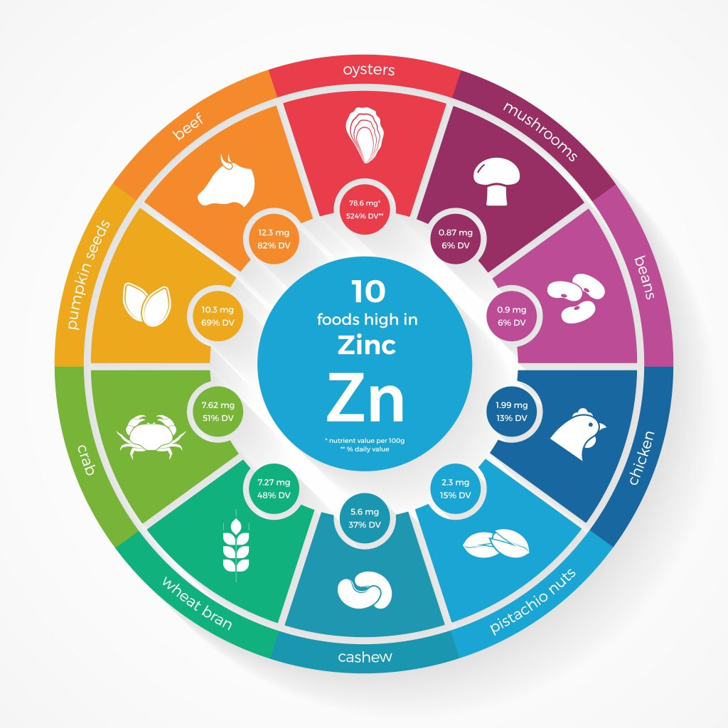 Zinc food sources infographic