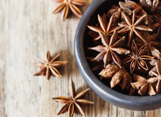 Anise Seed Featured Image 2
