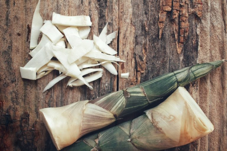 Bamboo Shoots Article - Featured Image