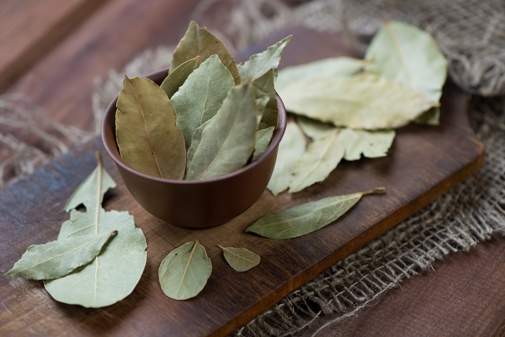 Bay Leaf Featured Image 2
