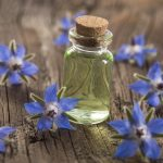 Borage: Top 10 Health Benefits, History & Yummy Recipes