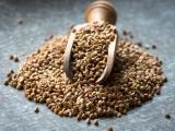 16 Amazing Health Benefits of Buckwheat: Diabetes Prevention