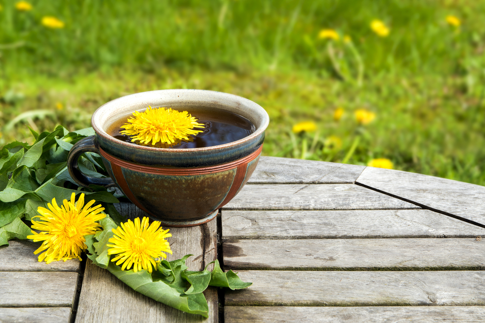 Dandelion Herb Tea