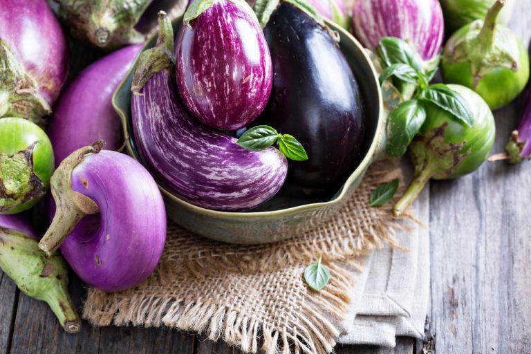 Different varieties of eggplant 2