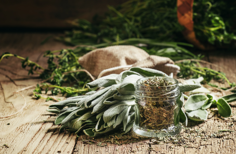 Fresh and dried sage