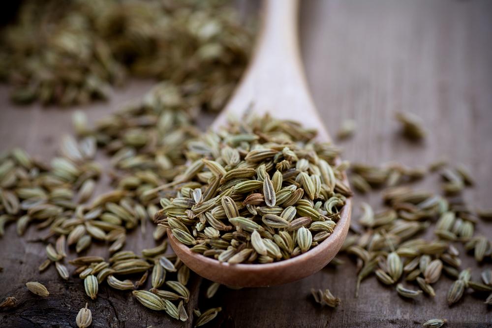 Funnel Seeds 2