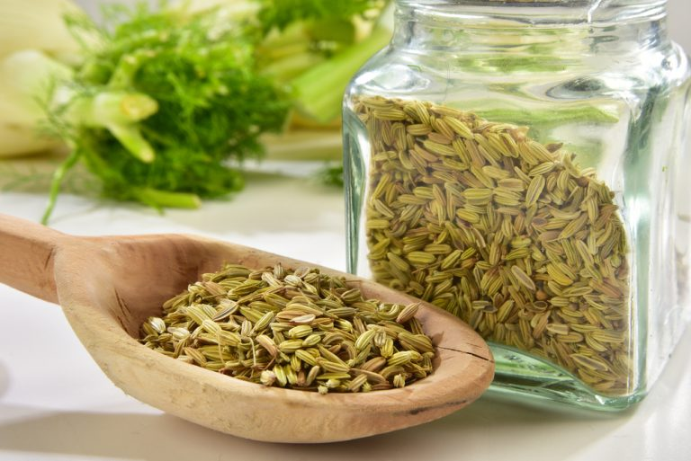 Fennel Seeds Article Featured Image