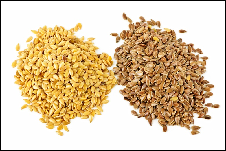 Golden and Brown Flaxseeds