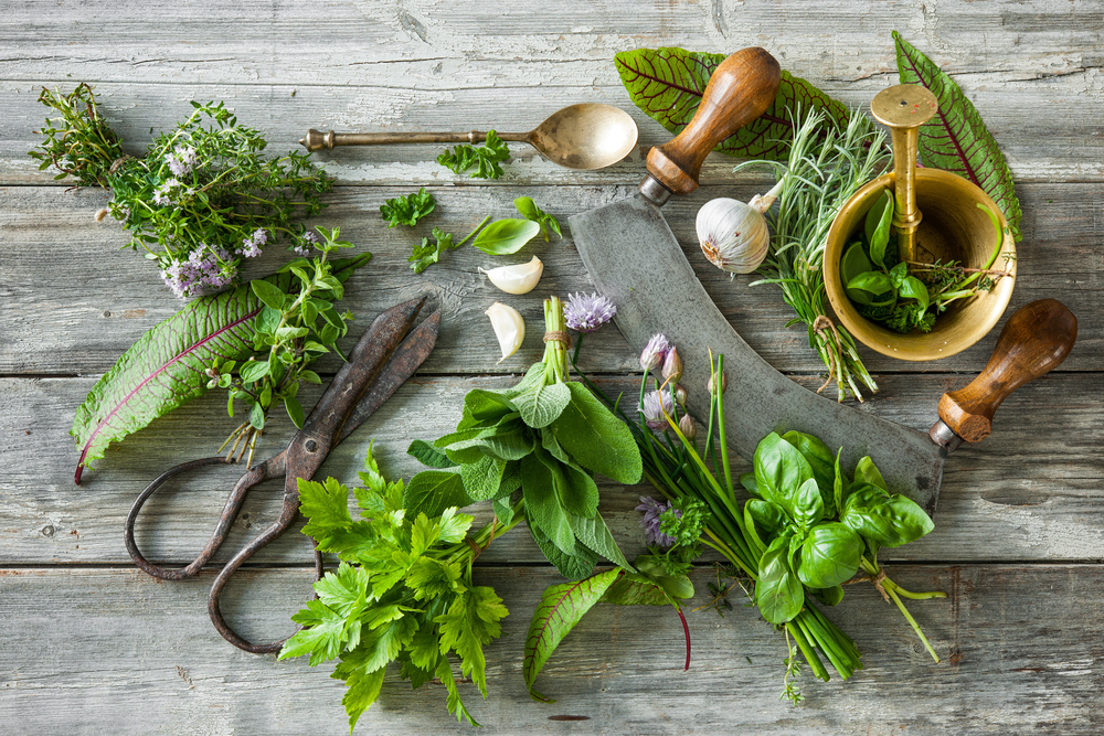 Herbs Featured Image