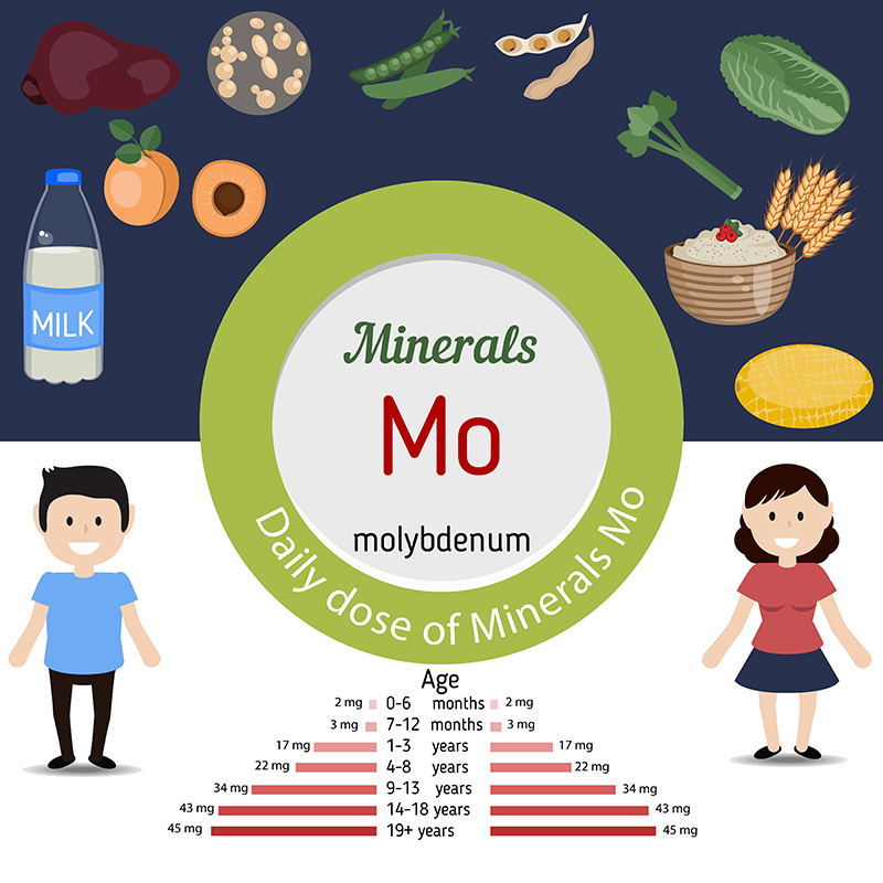 how to get more molybdenum in your diet