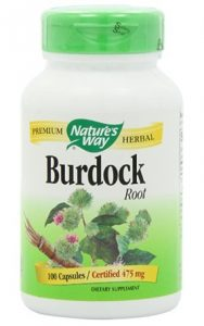 Nature's Way Burdock Root