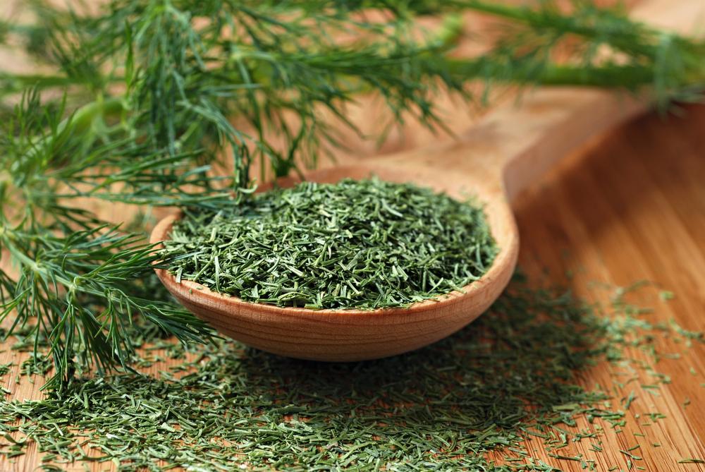 Organic Dill Weed 2