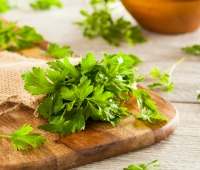 Parsley: History, Nutrition Facts, Health Benefits, Side Effects, and Fun Facts