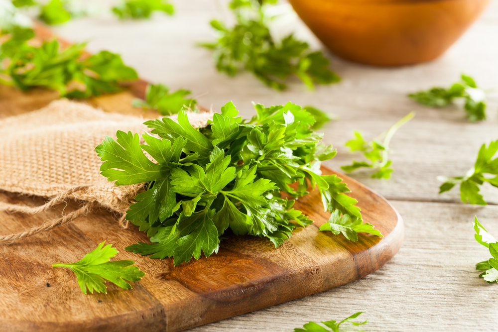 Where to buy parsley tea in singapore