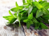 Peppermint: History, Nutrition Facts, Health Benefits, Side Effects, and Fun Facts