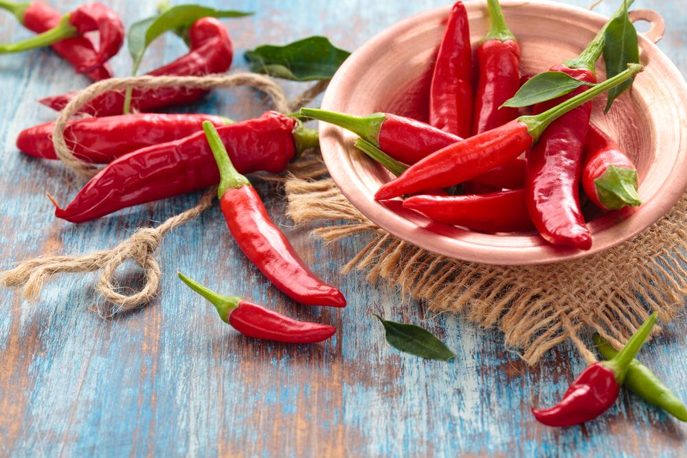 Red Chili Pepper 2