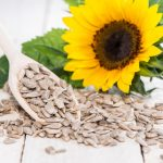 Sunflower Seeds: Health Benefits, Nutrition Facts, History & Recipes