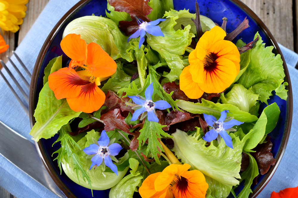 The Healthy Red, White, and Blue Salad