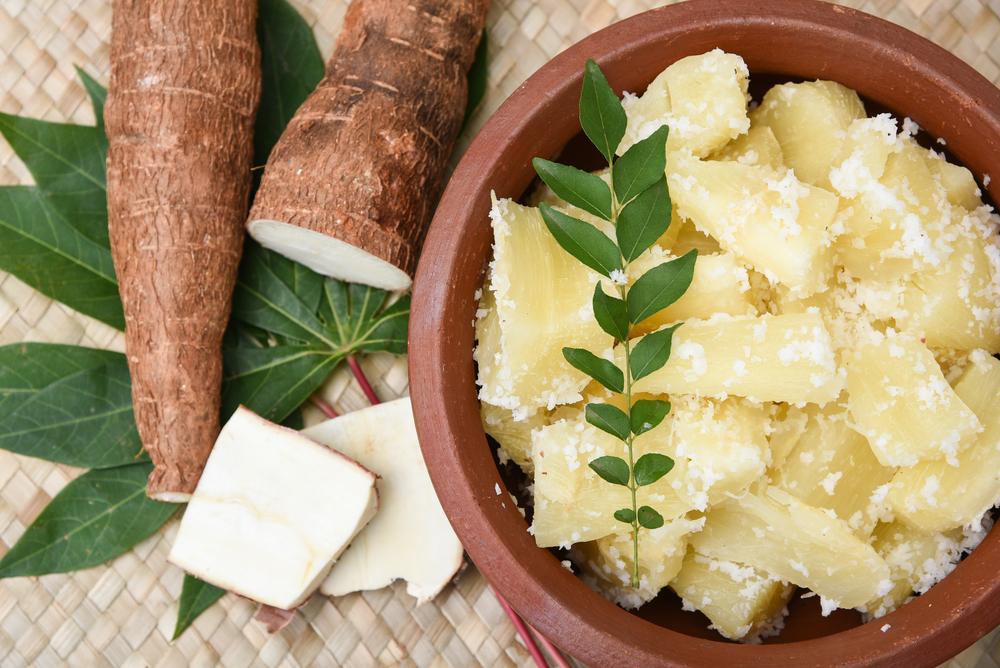 Cassava Article - Featured Image