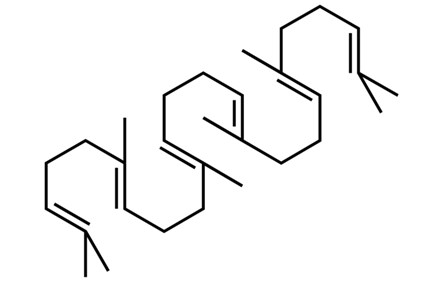 Chemical structure of squalene