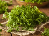 Chervil: History, Nutrition Facts, Health Benefits, Side Effects, and Fun Facts