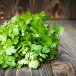 Coriander Article - Featured Image