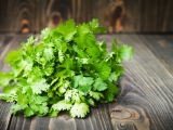 Coriander (Cilantro): History, Nutrition Facts, Health Benefits, Side Effects, and Fun Facts