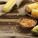 Corn (Maize): Health Benefits, Side Effects, Fun Facts, Nutrition Facts and History