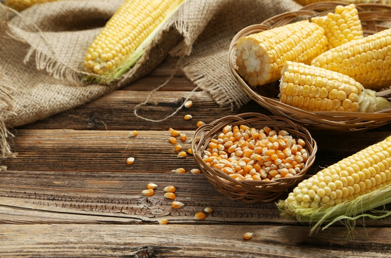 Corn (Maize) Health Benefits Article - Featured Image 2