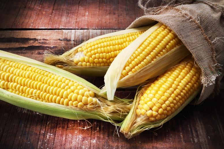 Fresh Sweet Corns
