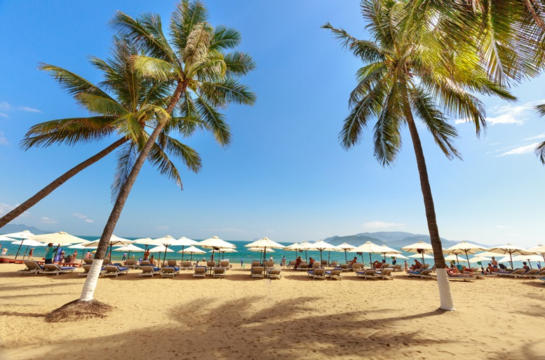 Overlooking the beautiful coast of Nha Trang with palm trees on the beach