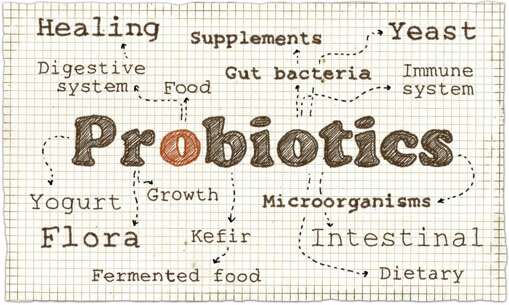 Probiotics Article - Featured Image