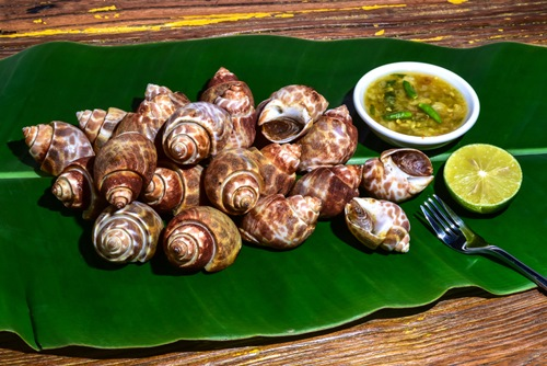 Spicy Grilled Snails