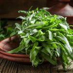Tarragon Article - Featured Image