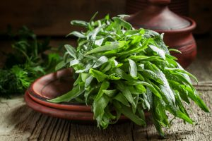 Tarragon: History, Nutrition Facts, Health Benefits, Side Effects, and Fun Facts