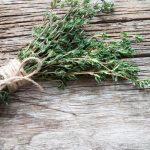 Thyme Herb Article - Featured Image